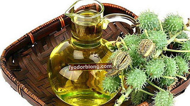 Ricinusolie - Fordele, hvordan man bruger og kontraindikationer