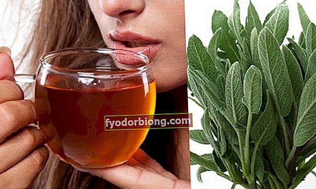 Drik denne te på tom mave og forbrænd mavefedt på 4 dage