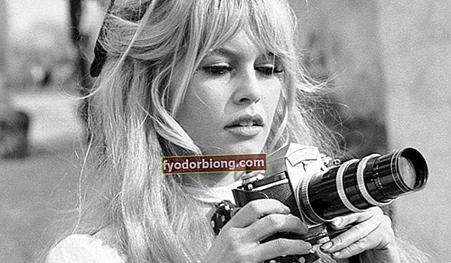 Brigitte Bardot, hvem er det? Ægteskabers biografi, karriere og polemik