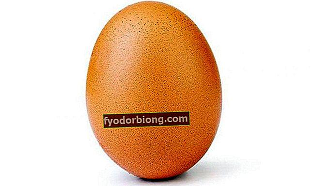 Æg bliver Instagrams mest populære foto og overgår Kylie Jenner!