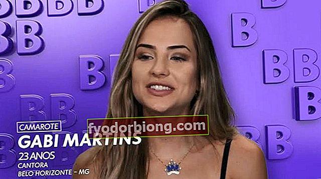 Gabi Martins, hvem er det? Biografi, karriere, youtube og succeser for sangeren