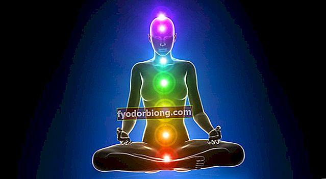 Chakraer - Hvad de er, hvordan de påvirker vores krop + de 7 vigtigste