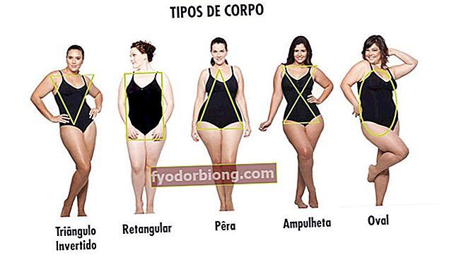 Mød 5 kropstyper og find ud af, hvilken der er din