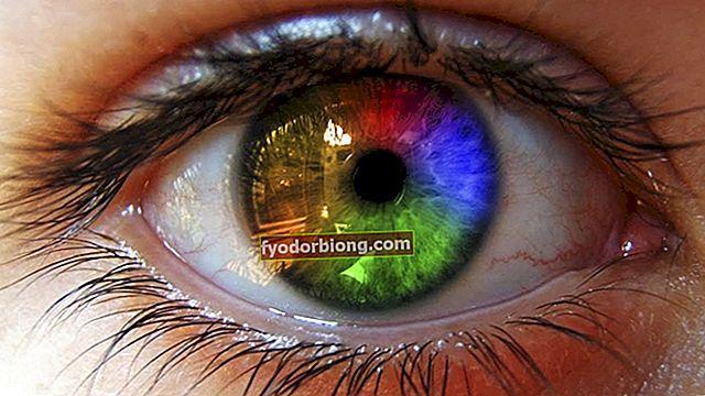Farvede kontaktlinser - hvorfor bruge, pleje og risici