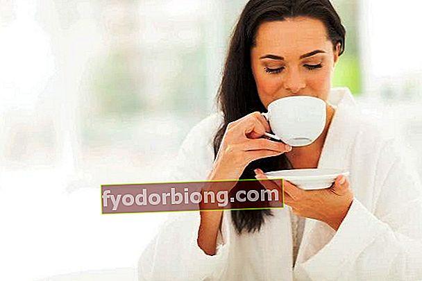 Blackberry Leaf Tea - Nyttighed, hvordan man gør det og fordele
