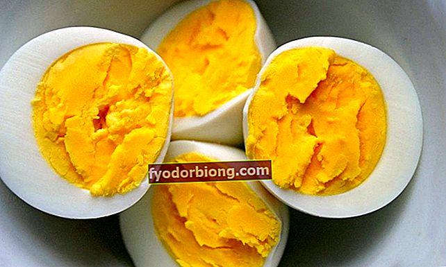 Hvordan laver man æg? 6 forskellige former og tidspunkter for forberedelse