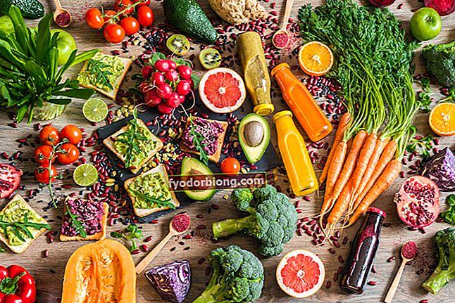 Fødevareuddannelse - Sådan kommer du i gang, tvivl og tip