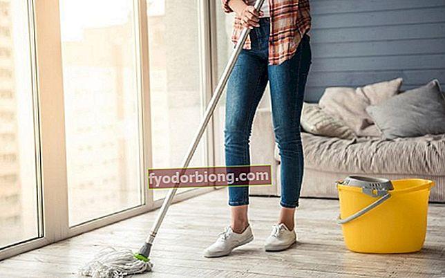 Rengøring - Hvor skal man starte, og hvordan man organiserer rengøring