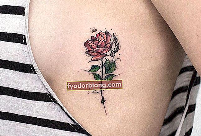 Rožu tetovējumi - nozīme un vairāk nekā 80 rožu tetovējumu iedvesmas