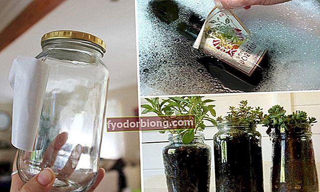 Kā noņemt etiķetes no stikla burkām un pudelēm, neatstājot līmes paliekas