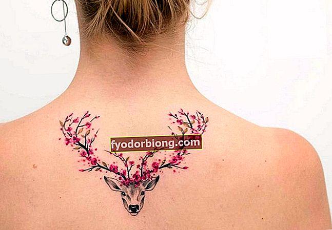 Γυναικείο τατουάζ, ποια είναι η τάση το 2019 και πού να τατουάζ