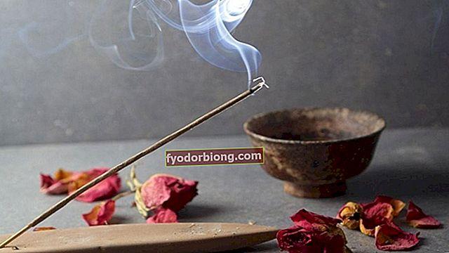 Vīraks - kam tie tiek izmantoti, kopšana un 15 visbiežāk izmantotie aromāti