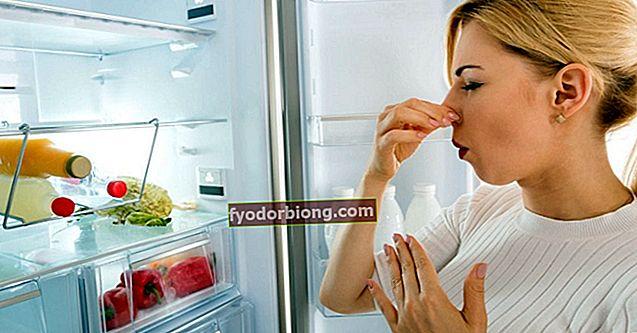 Dårlig lugt i køleskabet - Årsager og tip til at fjerne lugten
