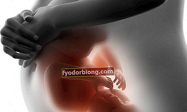 Mis juhtub kehas raseduse ajal? Vaadake muutust kuude lõikes