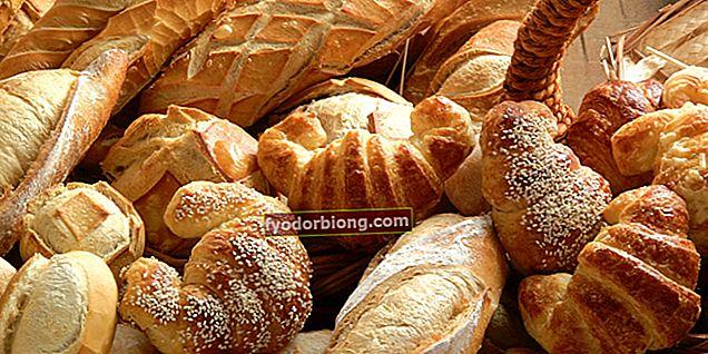 Typer af brød - Fra de mest populære til de mindst forbrugte rundt om i verden
