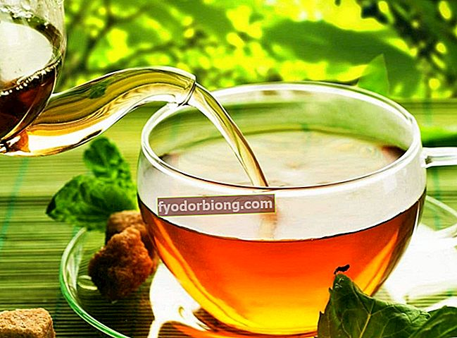 Fennikel te - Fordele, egenskaber og hvordan man laver
