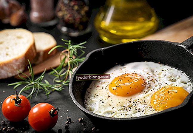 Stegt æg - 11 nemme, hurtige og lækre opskrifter til dig