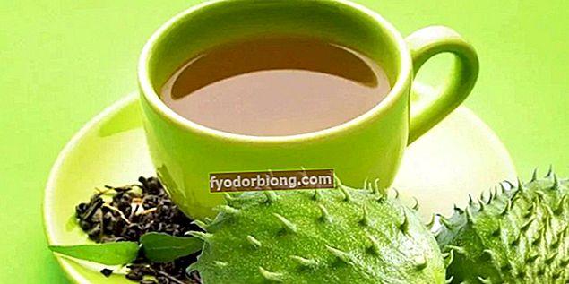 Soursop te, hvad er det til? Fordele i kroppen og opskriften