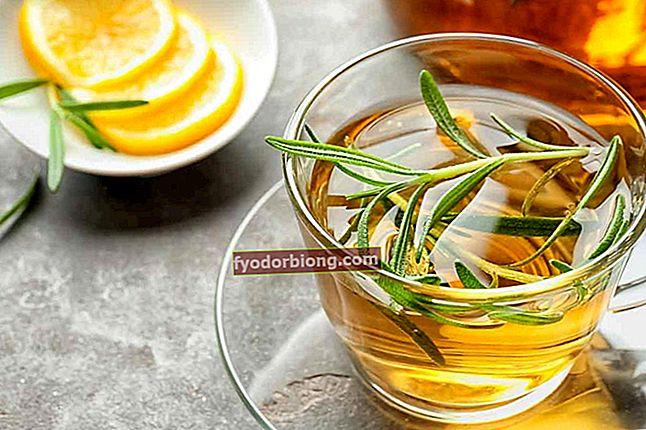 Rosmarin te - Egenskaber, hovedfordele og kontraindikationer