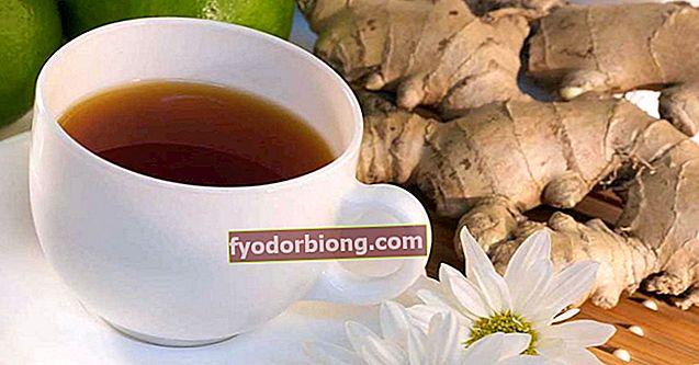 Ingefær te - Fordele, hvordan og kontraindikationer