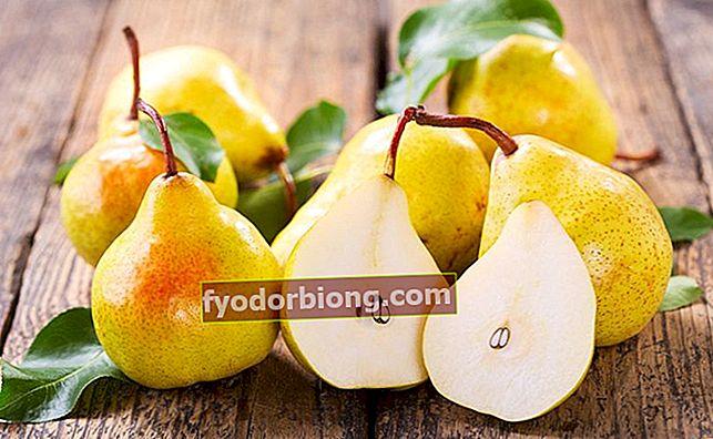 Pære - Typer, næringsstoffer til frugten og fordele for kroppen